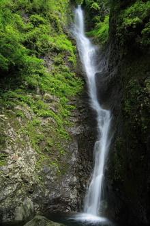 薮田織也の雑草子 - 侮りがたし 「 渾床の滝 」