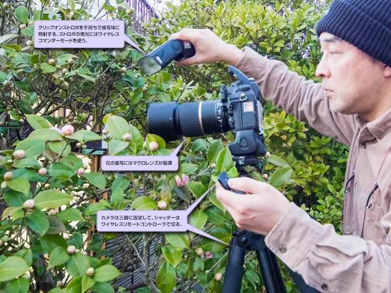 花のストロボ撮影方法