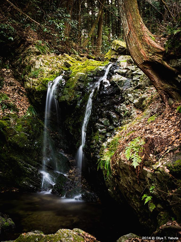 八王子城跡 - 御主殿の滝