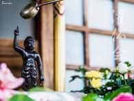 スタグラのトップからの鶴の一声で、先日の「 しだれ桜の金屏風 」を撮影したときの奮闘記を「 髭達磨のプチ日記 」を書くことになり、再度みごとなしだれ桜が咲く浄福寺へと伺った。先日は夜の撮影だったので、ご住職 […]